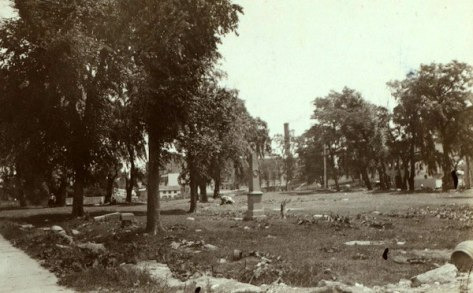 A view of Bensonia Cemetery in 1898 (NYPL)