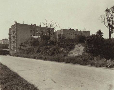 The Nagel Cemetery, ca. 1925 (NYPL)